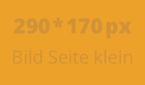 bild-03-klein-290 x 170-px