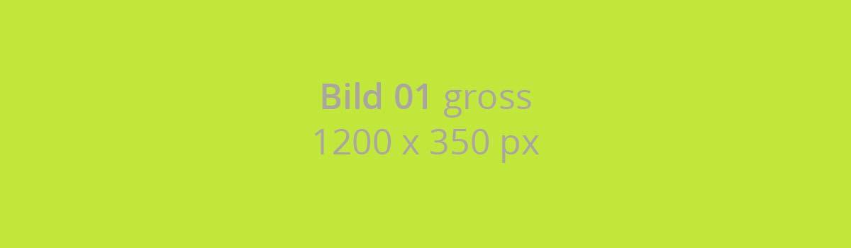 Bild-01-gross-1200-x-350-px