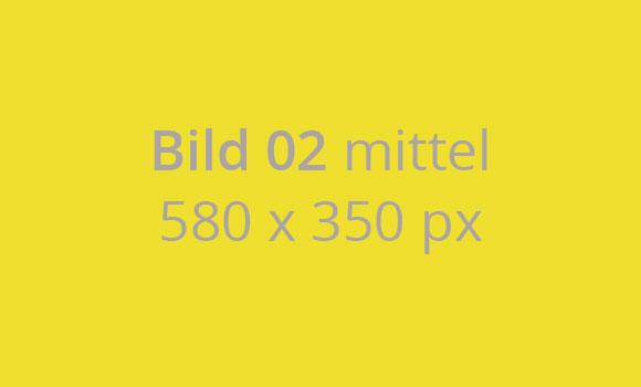 bild-02-mittel-580-x-350-px